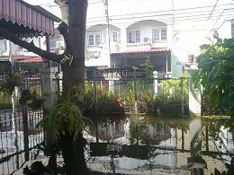 Inondations thai
