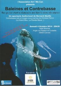 Baleines et contrebasse, affiche